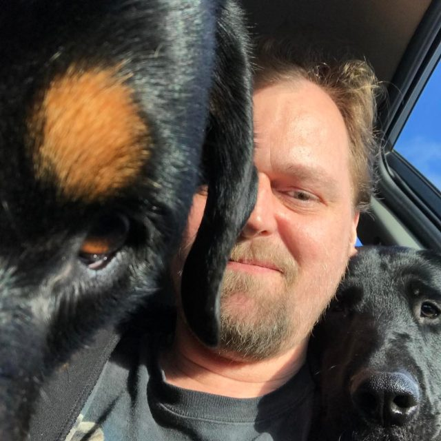 Selfie med hundene i bilen de elsker kameraet