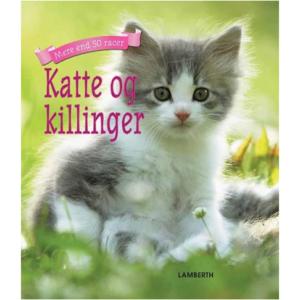 Katte og killinger