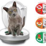 Det perfekte katte toilet