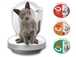Katte toilet