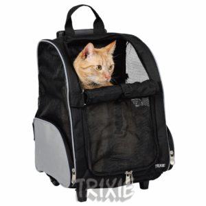 Kattetransport