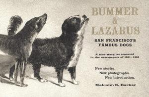 Bummer og Lazarus