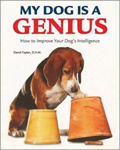 Din kloge hund