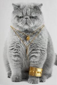 Kattesmykker